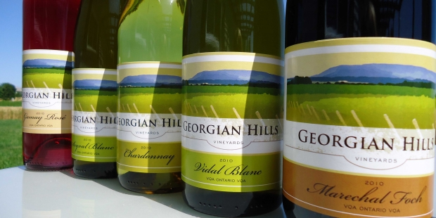 new arrival c371e eca00 Georgian Hills Vineyards  A Vision in the Making