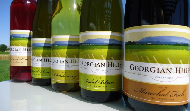 Georgian Hills Vineyards: A Vision in the Making