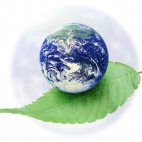 The Dirty Truth in Greenwashing