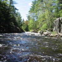 Five things you can do for rivers, lakes and streams